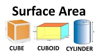 Surface Area of Cube, Cuboid and Cylinder - Surface Area And Volumes | Math | Letstute