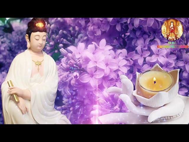 Thờ Thỉnh Tượng Phật Sao Cho Đúng – Đừng Mê Lầm Làm Trái Nhân Quả – Rất Hay Nên Nghe