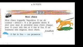 Видеоурок L'oiseau bleu 5 класс