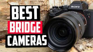 Best Bridge Cameras in 2020 [Top 5 Picks Reviewed!]