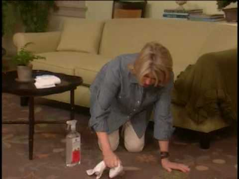Martha Stewart Clean Carpet Stain Remover