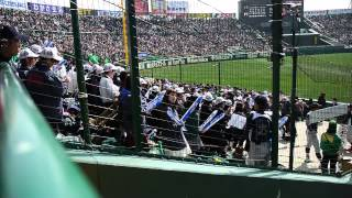 2015 選抜高校野球 東海大菅生 応援メドレー(絶叫入り)