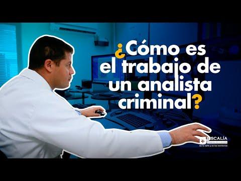 ¿Cómo es el trabajo de un analista criminal?
