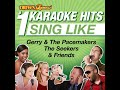 If You Gotta Make a Fool of Somebody (Karaoke Version)