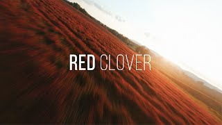 Red Clover   FPV Drone