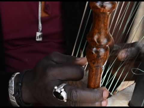 Baboulaye Cissokho plays Kora