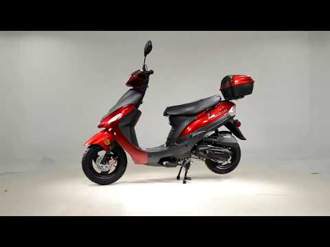 2020 Tao Motor Pony50 ATM50A1 in Dearborn Heights, Michigan - Video 1