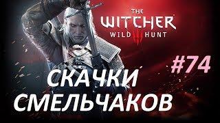 The Witcher 3 Wild Hunt Прохождение 74 Скачки смельчаков \ All Horse Races & Locations