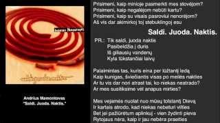 "Video thumbnail of ""Andrius Mamontovas - Saldi Juoda Naktis"""