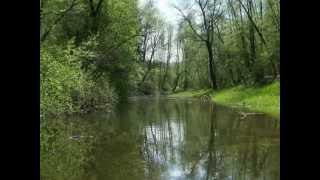 preview picture of video '-Renaturierungsplan- Griesstätt bis Murn (30.4.2006)'