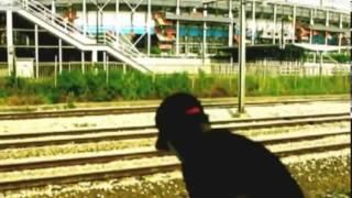 Голландский экстремал бросился на рельсы под скоростной поезд