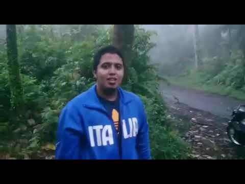 Seorang pria di terkam singa di hutan terekam kamera