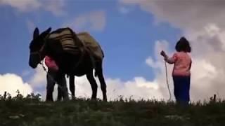 Muhteşem Görüntüler Berendi ve Yaylaları Memduh Ekici  nin Kamerasından Karaman Ayrancı