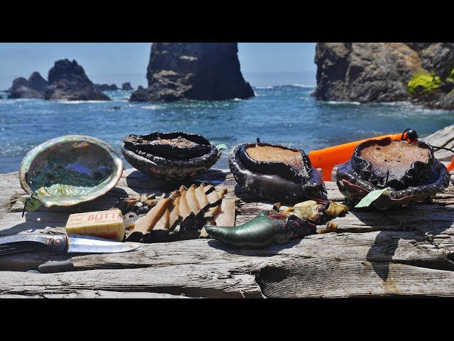 Eating RAW Abalone and BLUE Meat Cabezon * Giant Sea Snail Taste Test!