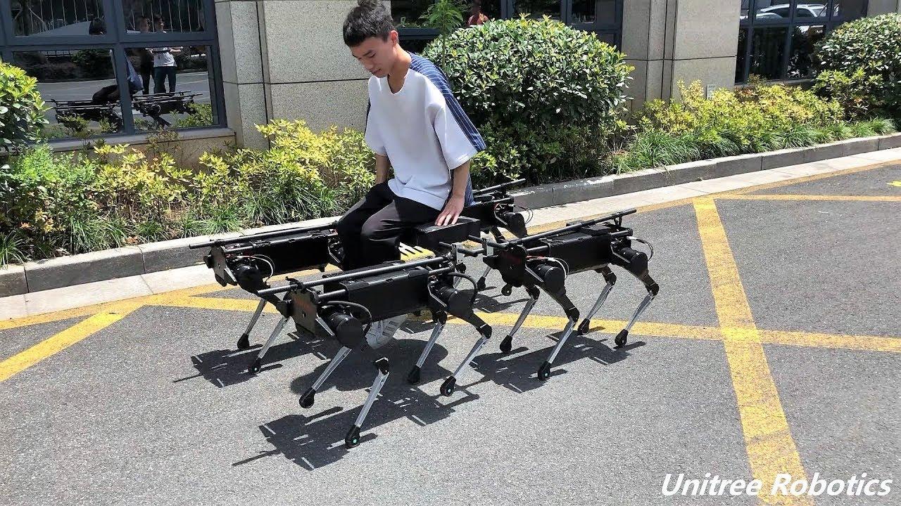 #видео | Китайские роботы такие же сильные, как ездовые собаки