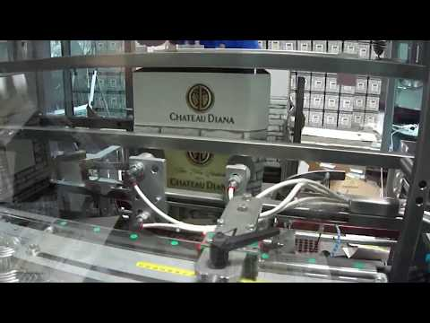 Automatic Case Erector for Bottling Lines