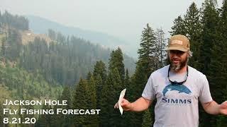 Jackson Hole Fly Fishing Forecast 8.21.20