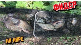 Рыбалка на наре в папино