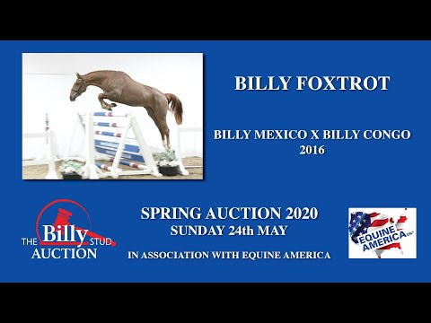 Billy Foxtrot