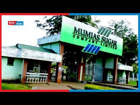 Revival bid of Mumias Sugar company facing rocky future as receiver blames politics for take-over