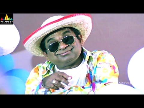 Party Movie Comedy Scenes | Brahmanandam Comedy | Sri Balaji Video