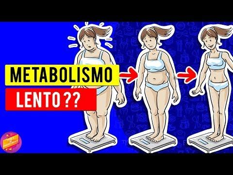 Metabolismo Lento Como Acelerar