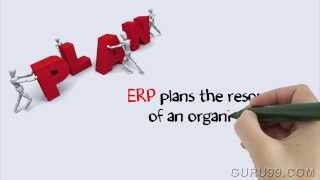 CRM VS ERP - SAP Tutorial for beginners
