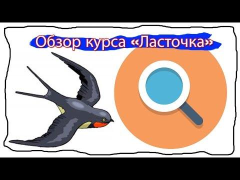 """Как заработать в интернете. Обзор курса от Марины Марченко """"Ласточка"""""""