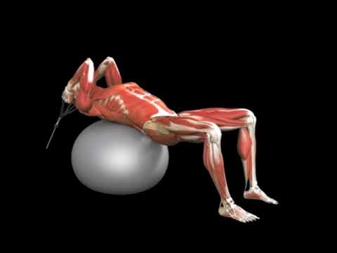 Stability Ball Lying Crunch (Cable)