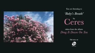 Ceres - Babys Breath