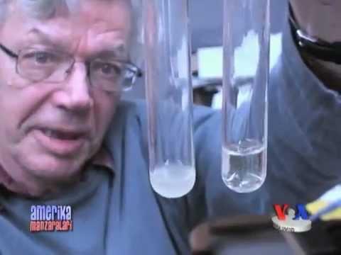 Prevenirea viermilor din corpul uman