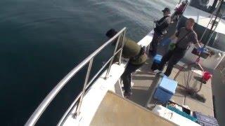 valgo&EJ6041でワラサ!玄界灘遊漁船「秀幸」