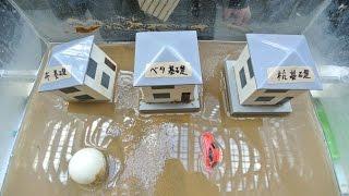 防災展2015~阪神・淡路大震災20年そして未来へ備えよう~液状化実験