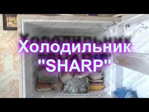 Ремонт холодильника Sharp
