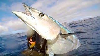 К какой отрасли относится ловля рыбы в океане
