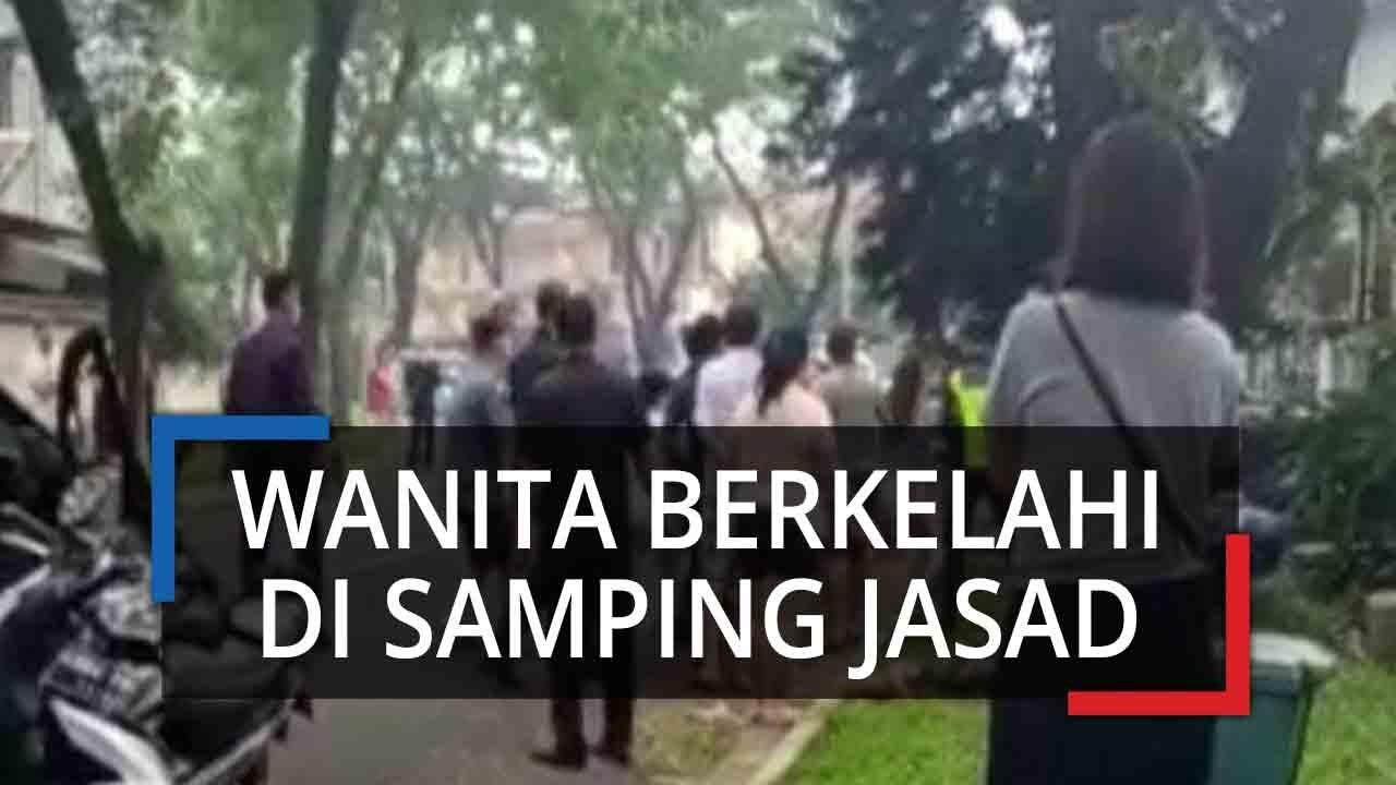 Pengendara Cekcok dengan Istri Pejalan Kaki yang Ditabrak hingga Tewas, Polisi Ungkap Kronologi