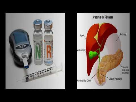 Factores que afectan a la diabetes