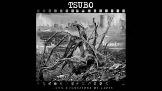 Tsubo - Storm of Stress (Terrorizer Cover)