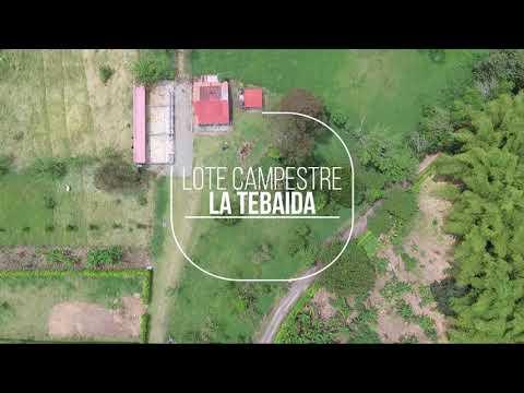 Lotes, Venta, La Tebaida - $1.200.000.000