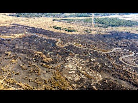 Greenpeace: H πυρκαγιά κοντά στο Τσερνόμπιλ προκαλεί κίνδυνο ραδιενεργού ακτινοβολίας…