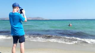Holiday in kos July 2017