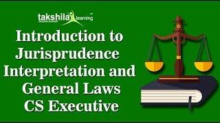 Jurisprudence interpretation and general laws