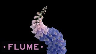 """Video thumbnail of """"Flume - Tiny Cities feat. Beck"""""""