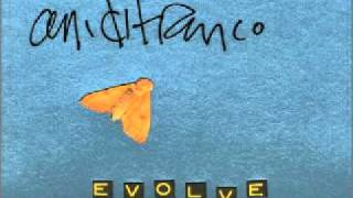 Ani DiFranco - Evolve.wmv