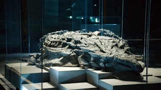 A Fossil Excavation Goes Wrong In The Worst Possible Way