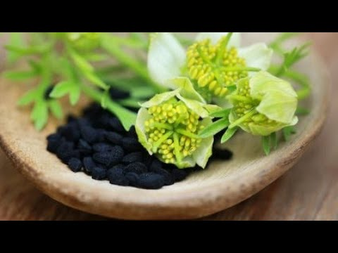 Bromu jako lek do zmniejszania potency
