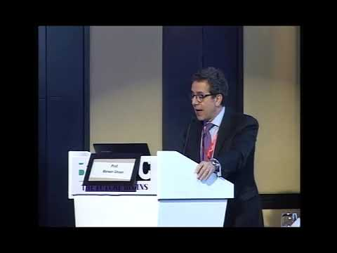 Prof Marwan Ghosn