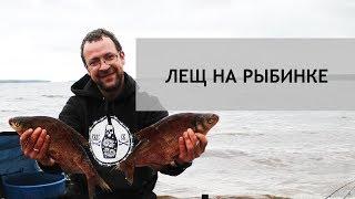 Фидер на рыбинском водохранилище в устье волги
