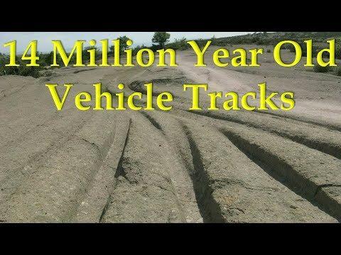 """Alexander Koltypin """"14 Million Year Old Vehicle Tracks"""""""