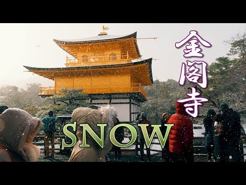 #KYOTO. Kinkaku-ji Temple in SNOW #4K #金閣寺 #京都大雪